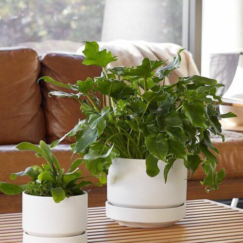 LBE Design Ceramic Indoor / Outdoor Planter, White